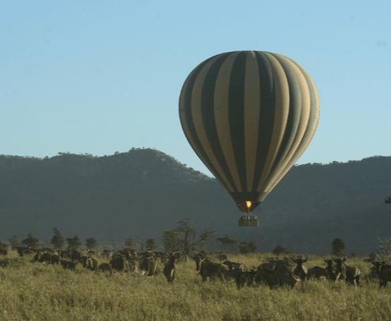 luchtballon safari in de serengeti