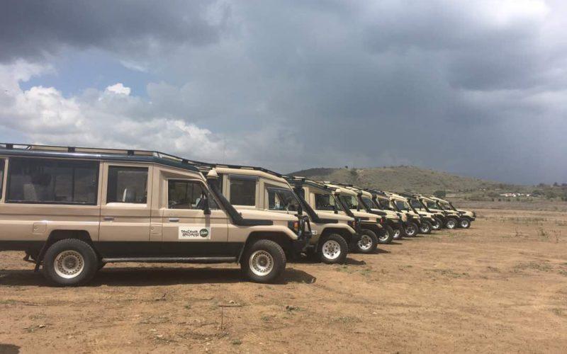 safari jeeps Tanzania Specialist