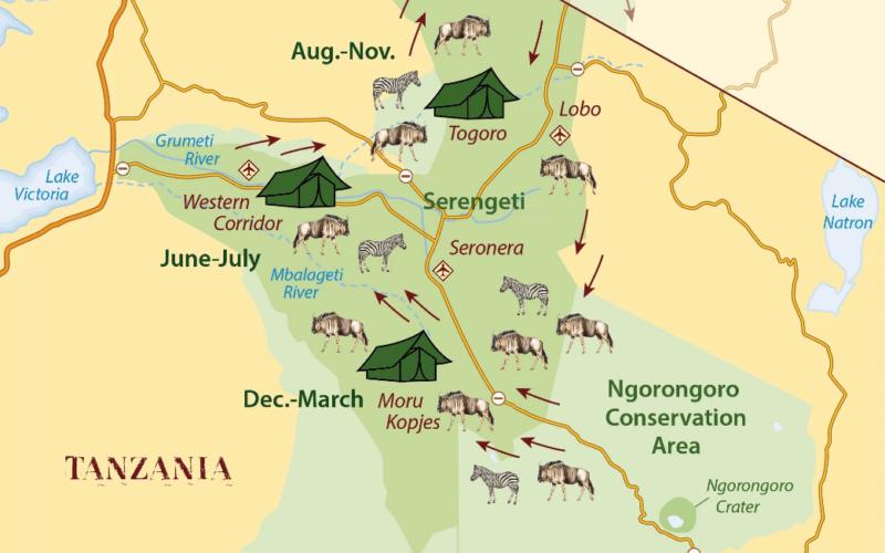 de Grote trek Serengeti
