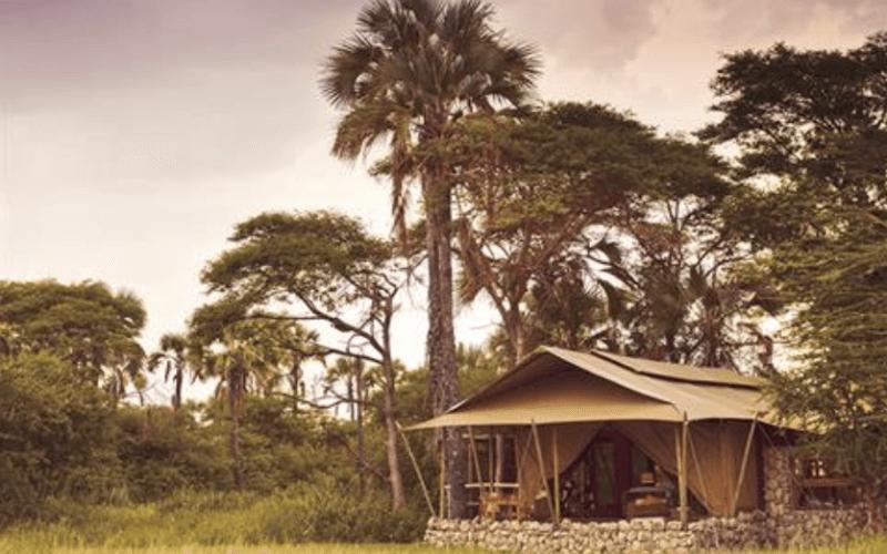 beschikbaarheid lodges Tanzania